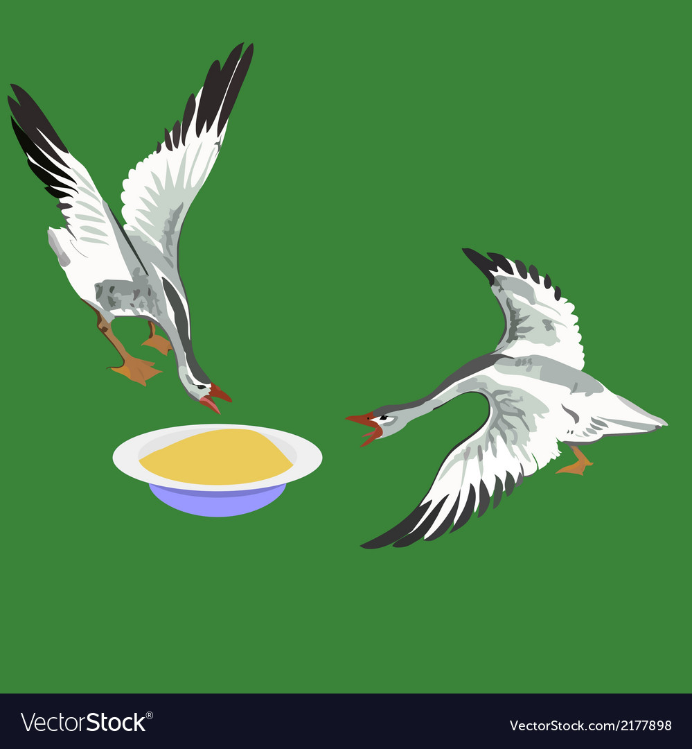Two geese vector | Price: 1 Credit (USD $1)