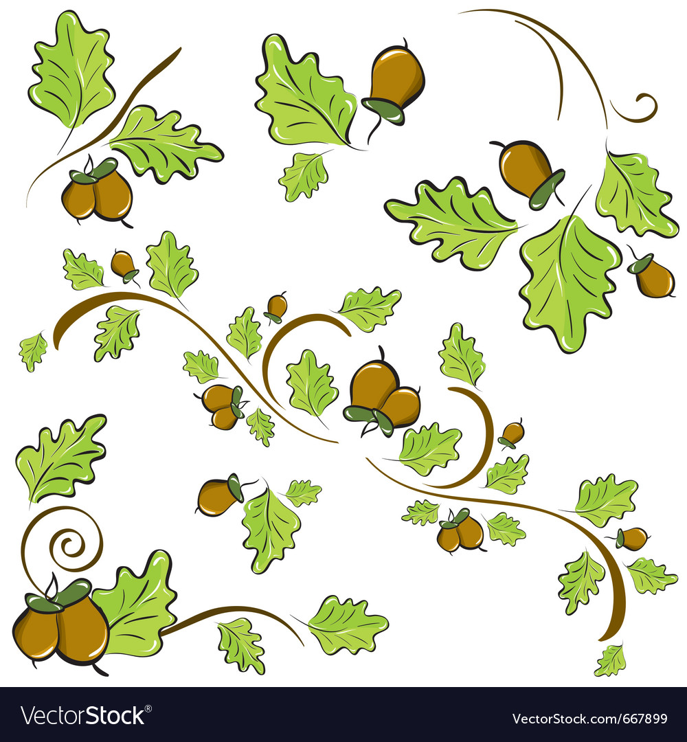 Acorns and oak leaves vector | Price: 1 Credit (USD $1)