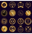 Collection of vintage round golden badges vector