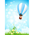 Flowers in the grass and hot air balloon in the sk vector