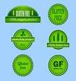 Set of gluten free food labels vector