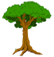 Majestic tree vector