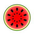 Watermelon on white background vector