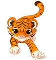 Crouching baby tiger vector