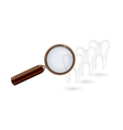 Magnifying glass and white teeth vector