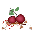 Christmas apples and spices on white background vector