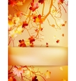 Autumn background with leaves eps 10 vector