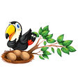 A nest at the branch of a tree with a bird vector