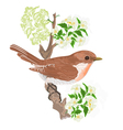 Bird on a twig jasmine vector