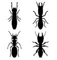 Termites vector