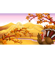 Cartoon autumn turkey vector