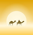 Two camels and sun vector