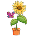 A sunflower plant in a pot vector