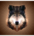 Polygonal wolf vector