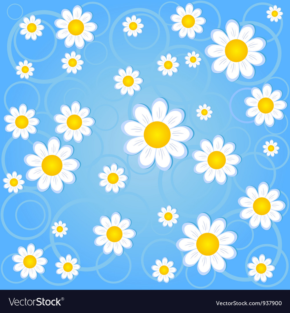 Chamomile background vector | Price: 1 Credit (USD $1)