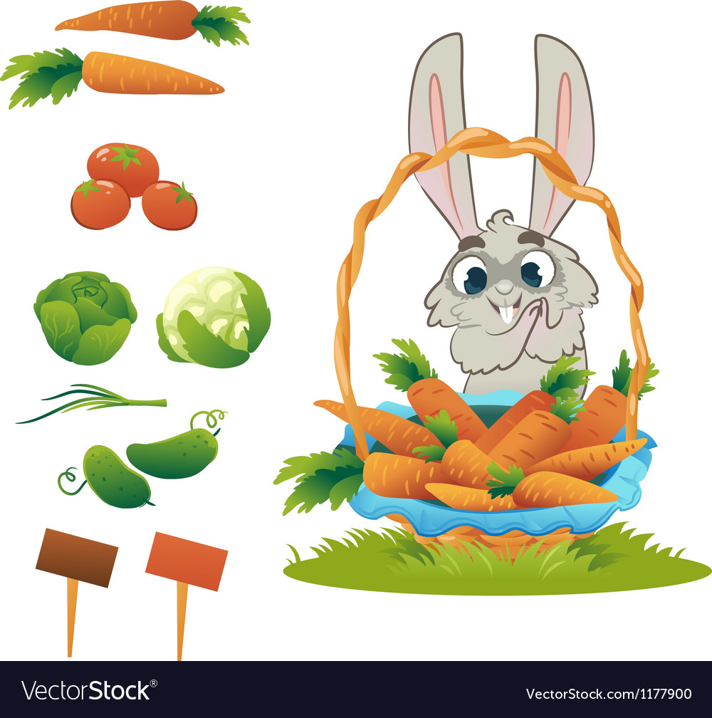 Collection vegetables cucumber tomato cabbage and vector | Price: 1 Credit (USD $1)