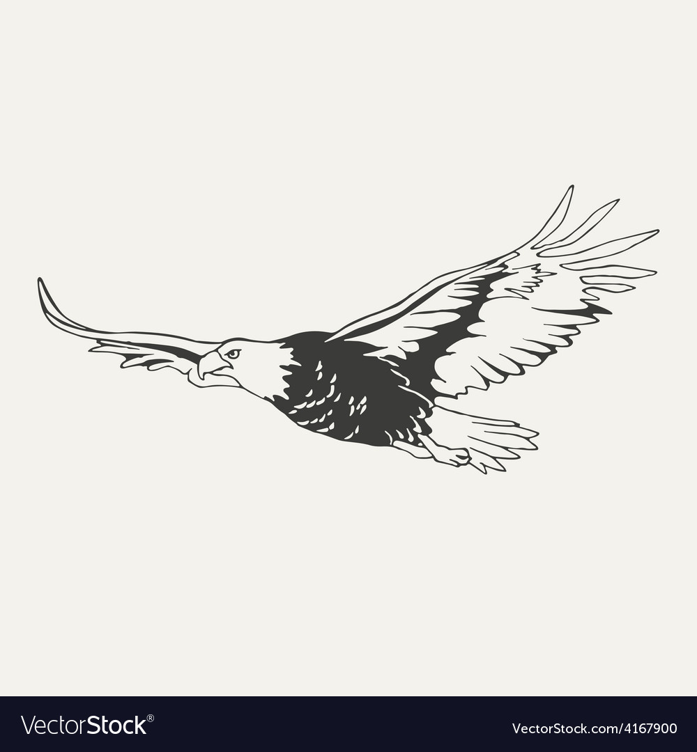 Eagle black and white style vector | Price: 1 Credit (USD $1)