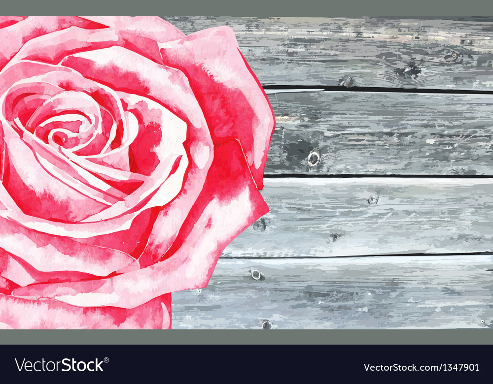 Wooden texture with watercolor rose vector | Price: 1 Credit (USD $1)