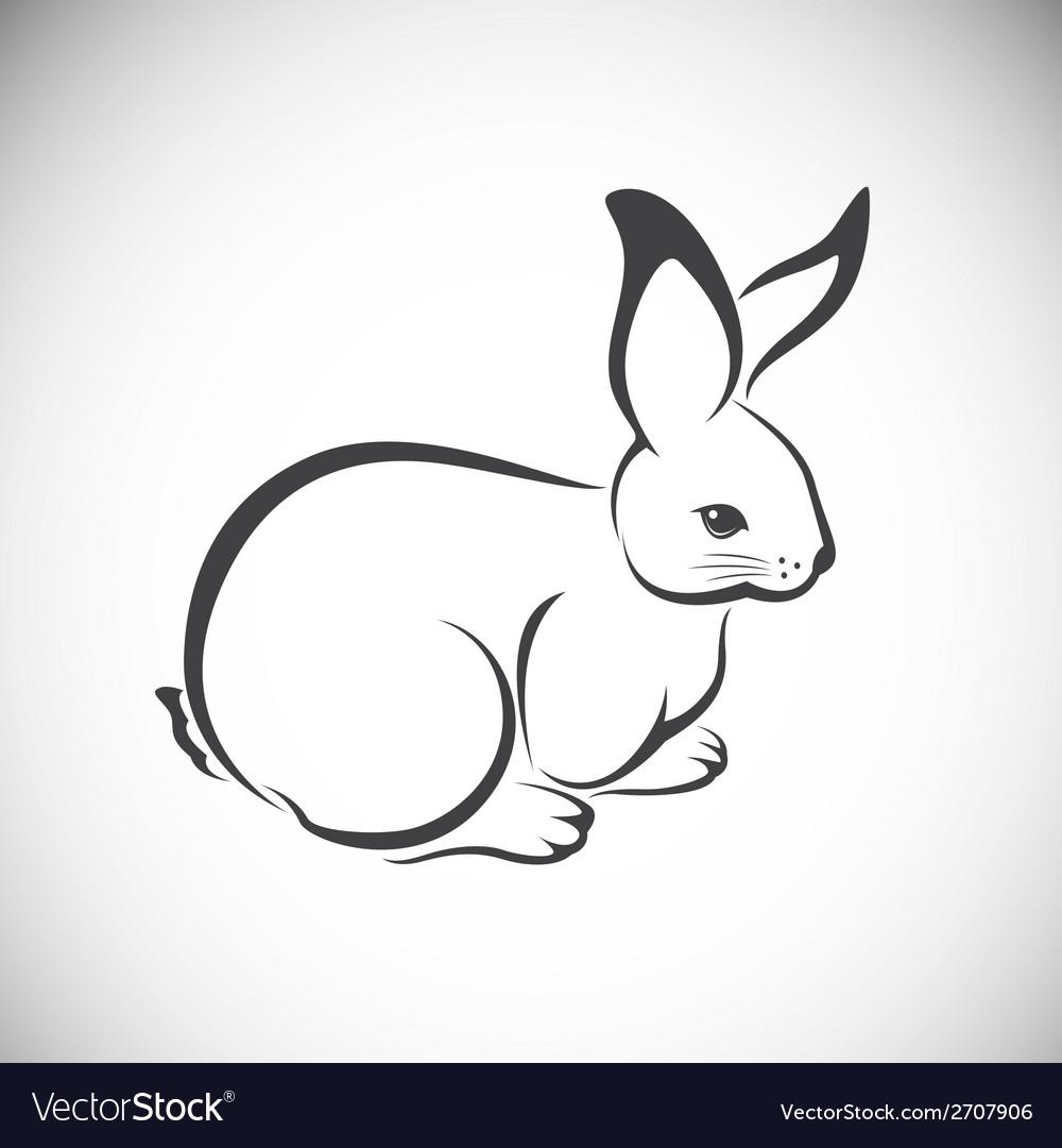 Rabbit vector | Price: 1 Credit (USD $1)