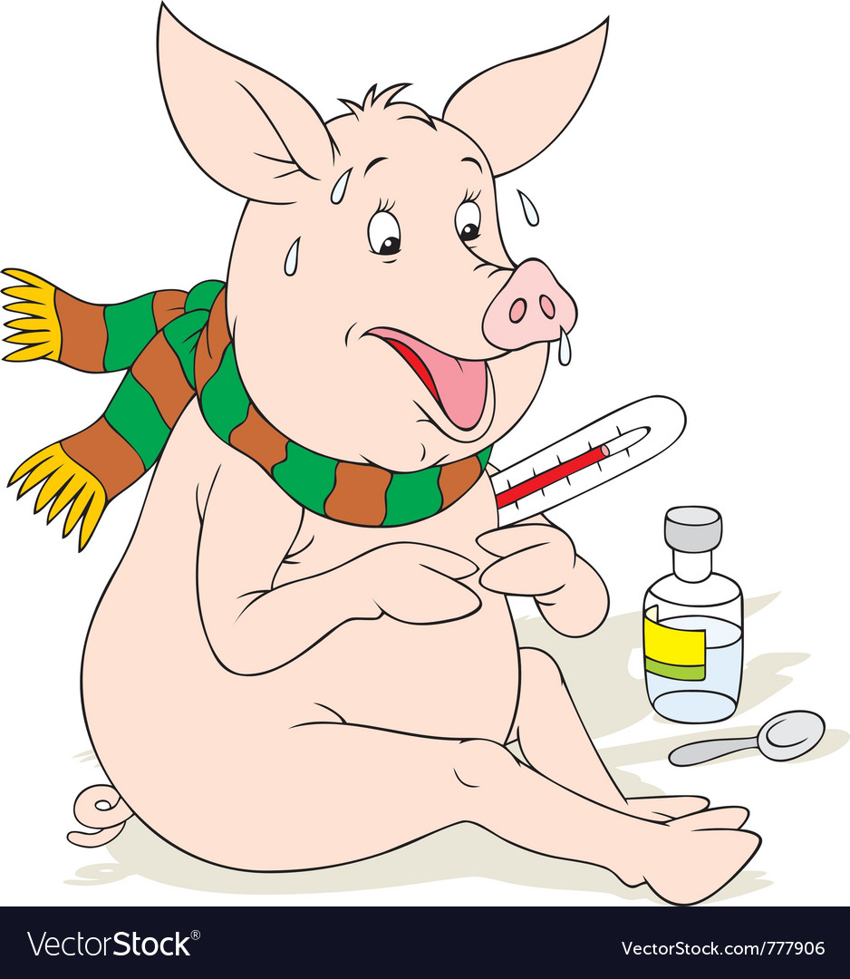 Swine flu vector | Price: 3 Credit (USD $3)