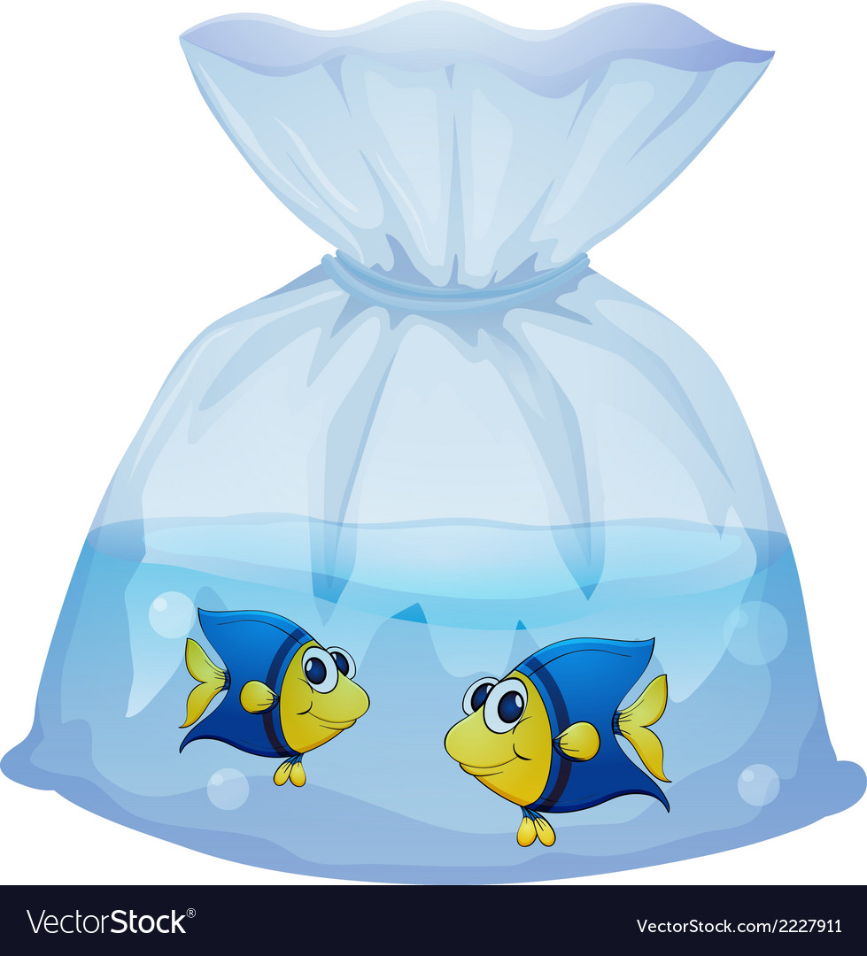 A plastic bag with two fishes vector | Price: 1 Credit (USD $1)