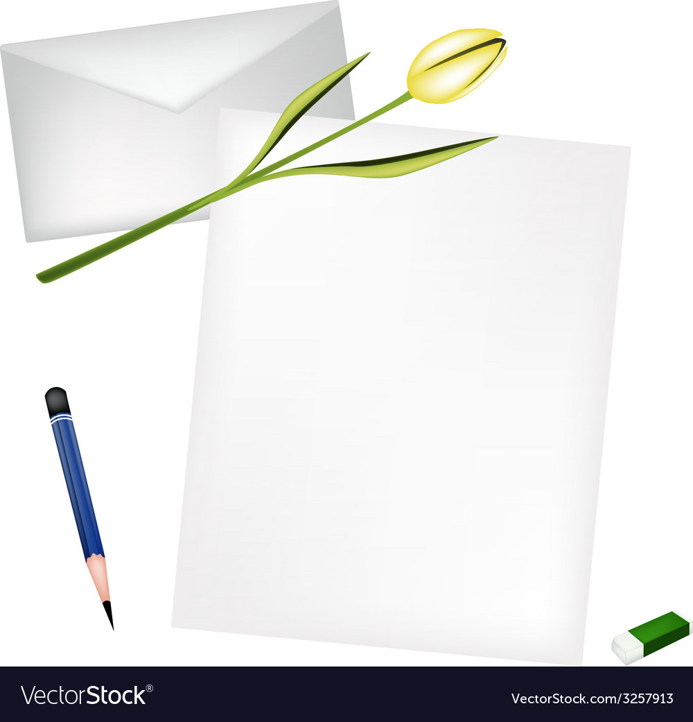 Yellow tulip on blank page and envelope vector | Price: 1 Credit (USD $1)