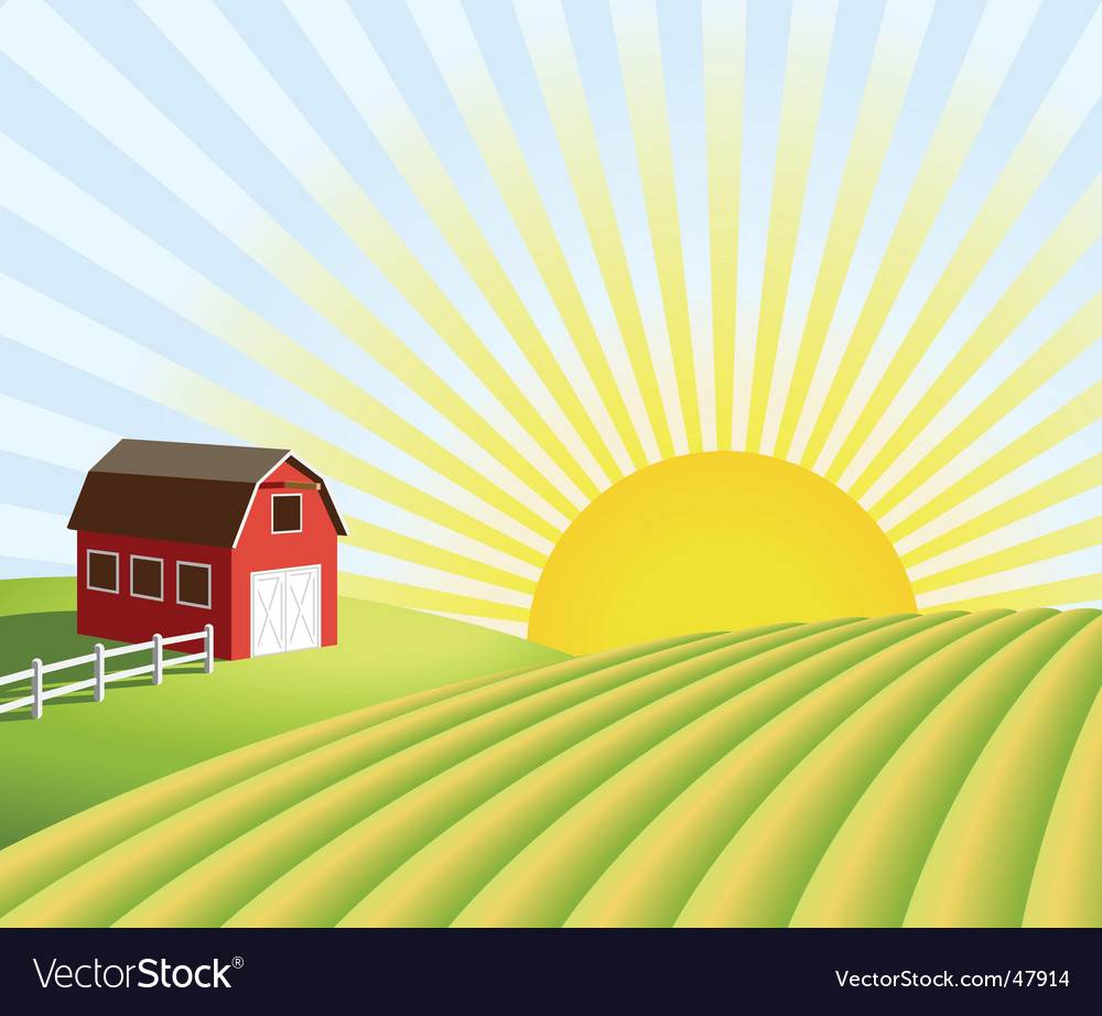 Farm and fields at sunrise vector | Price: 1 Credit (USD $1)