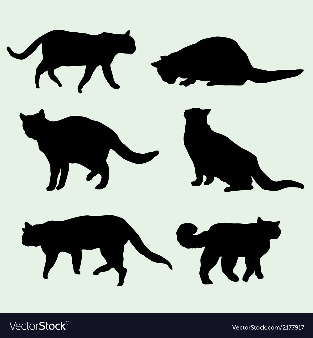Cats silhouettes vector | Price: 1 Credit (USD $1)