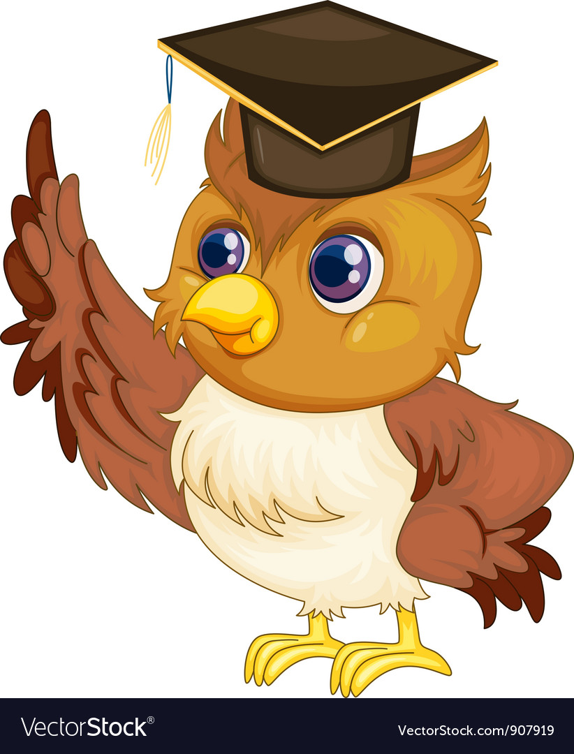 Wise owl vector | Price: 3 Credit (USD $3)