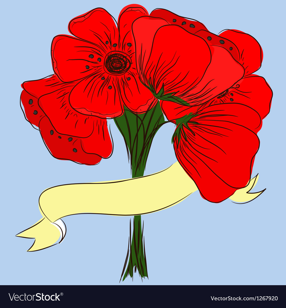 Hand drawing bouquet of poppies vector | Price: 1 Credit (USD $1)