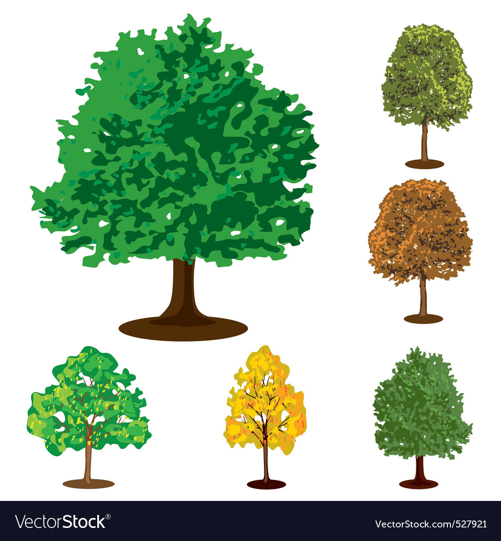 Collection of isolated trees vector | Price: 1 Credit (USD $1)