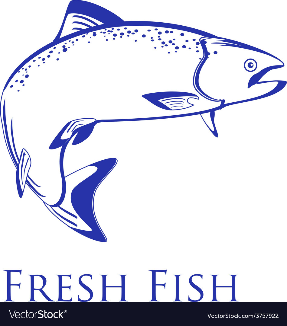 Salmon with text fresh fish vector | Price: 1 Credit (USD $1)