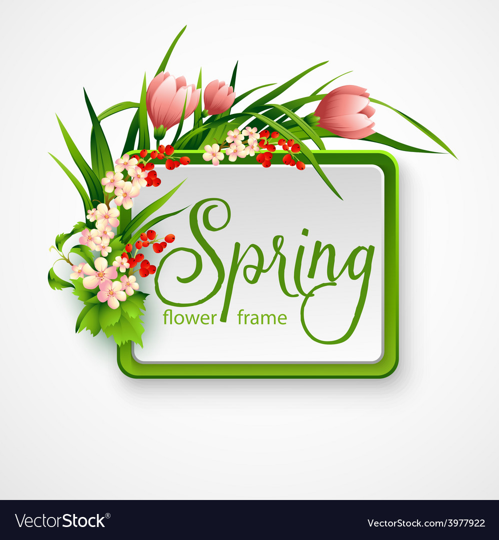 Spring frame with flowers vector | Price: 3 Credit (USD $3)
