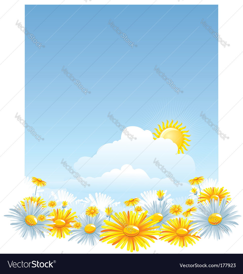 Beautiful background with a chamomile vector | Price: 3 Credit (USD $3)