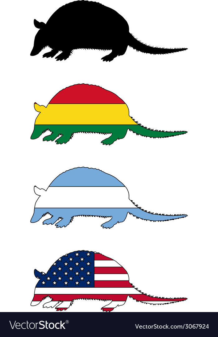 Armadillo flags vector | Price: 1 Credit (USD $1)