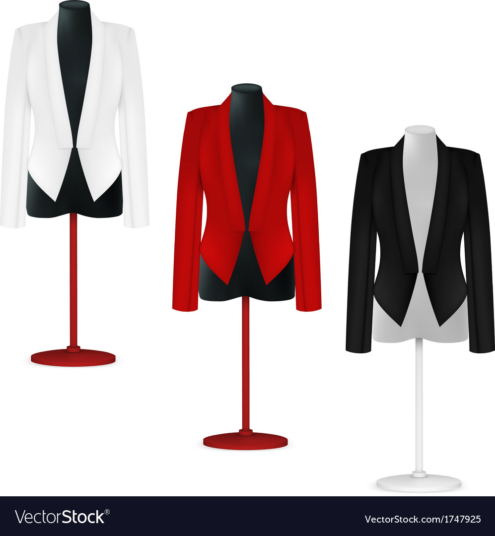 Classic women plain jacket template vector | Price: 1 Credit (USD $1)