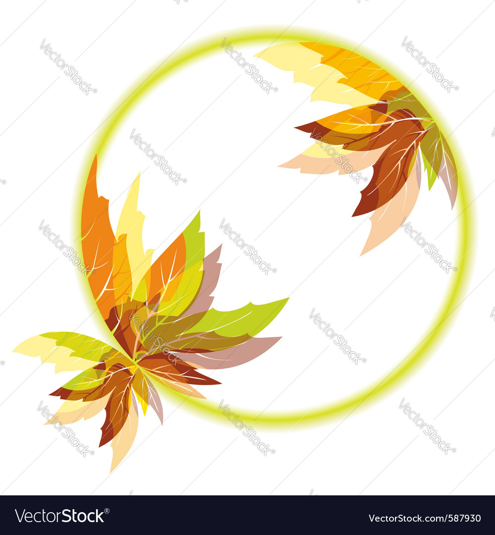 Autumn leaves vector | Price:  Credit (USD $)