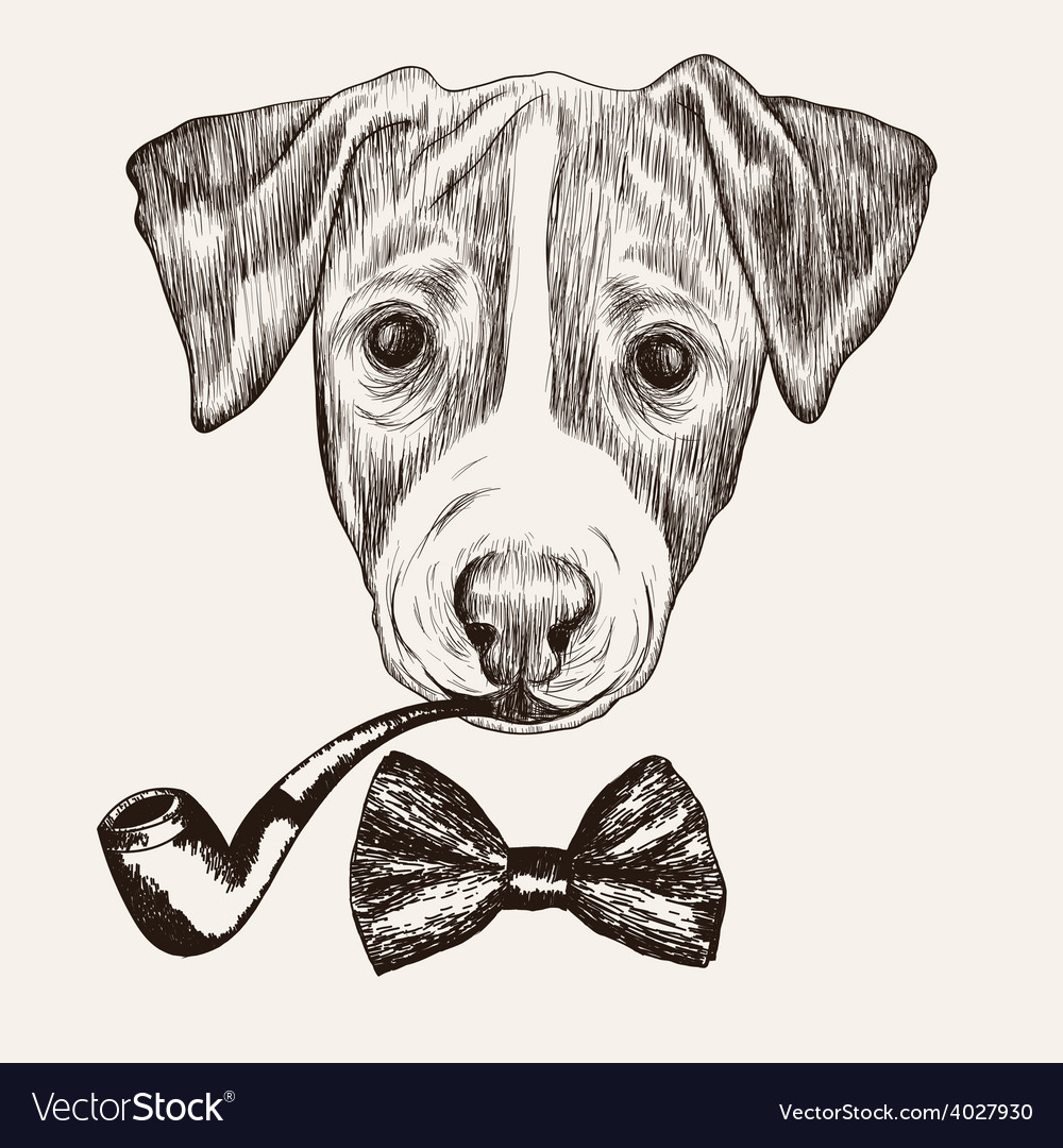 Sketch jack russell terrier dog with bow tie and vector | Price: 1 Credit (USD $1)