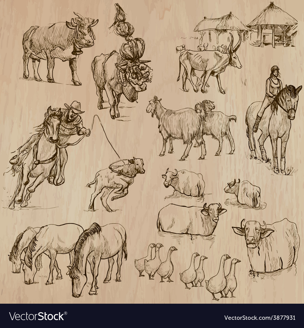 Farm animals hand drawn pack vector | Price: 1 Credit (USD $1)