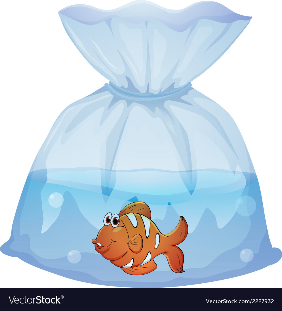 A fish inside a pouch vector | Price: 1 Credit (USD $1)