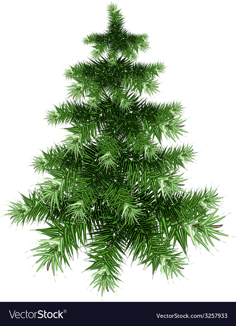 Fluffy green christmas tree vector | Price: 1 Credit (USD $1)