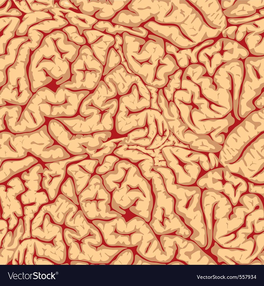 Seamless brain convolutions vector | Price: 1 Credit (USD $1)