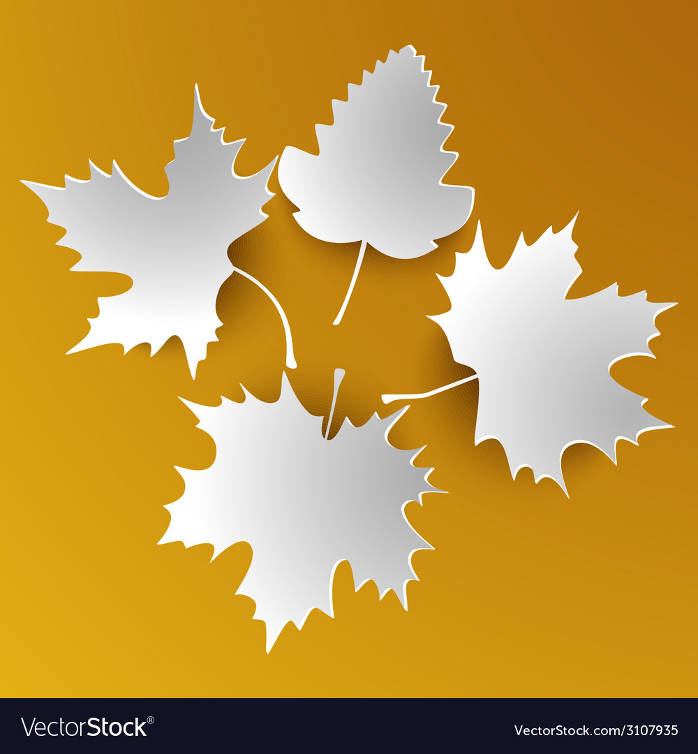 Autumn abstract white leaves vector | Price: 1 Credit (USD $1)