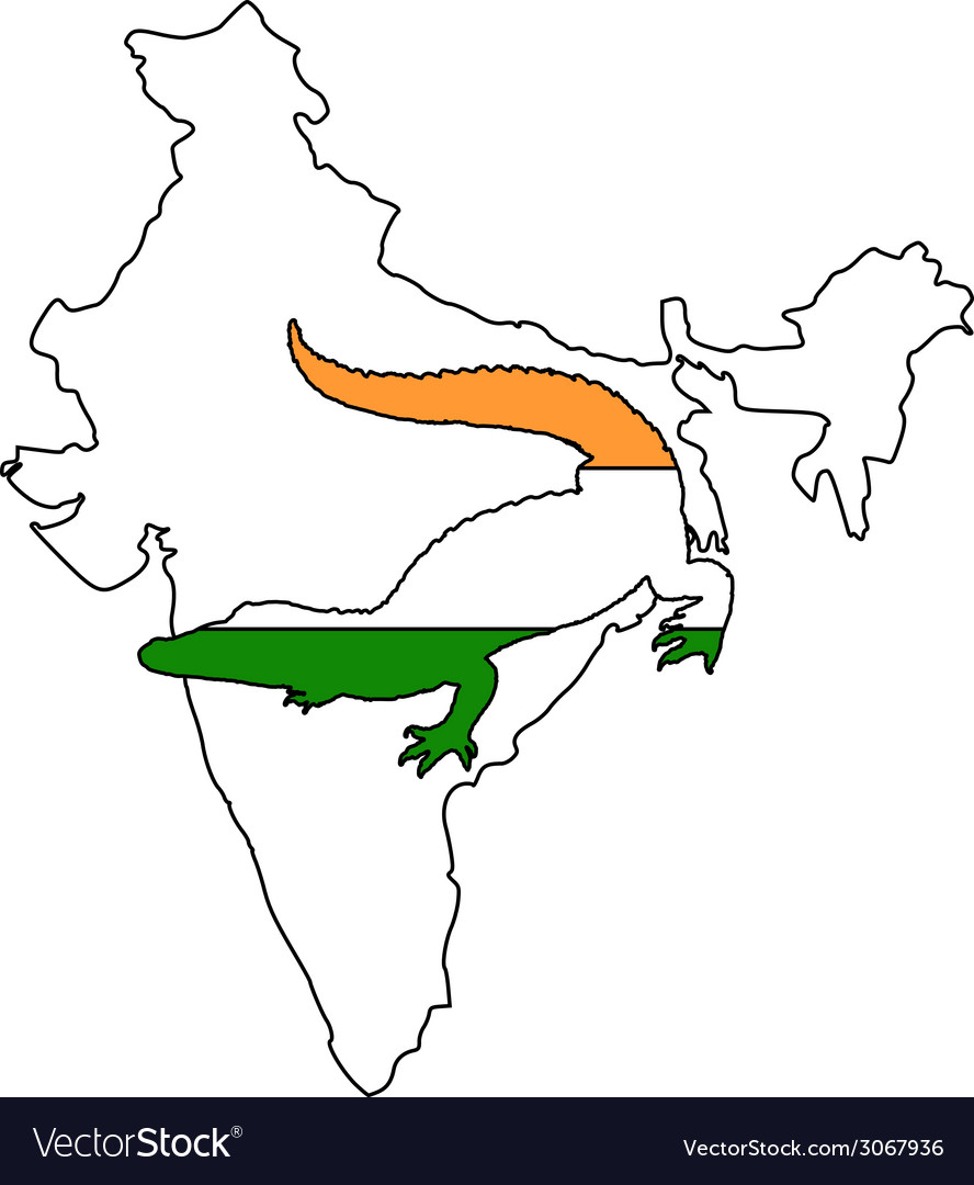 Crocodile india vector | Price: 1 Credit (USD $1)