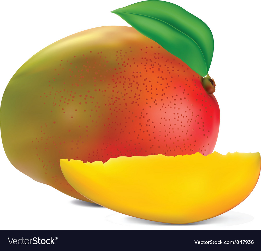 Fresh mango vector | Price: 1 Credit (USD $1)