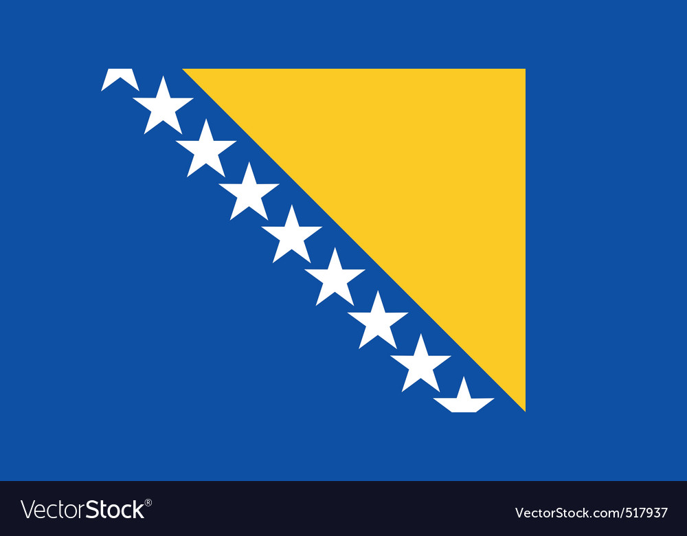 Bosnian and herzegovinian flag vector | Price: 1 Credit (USD $1)