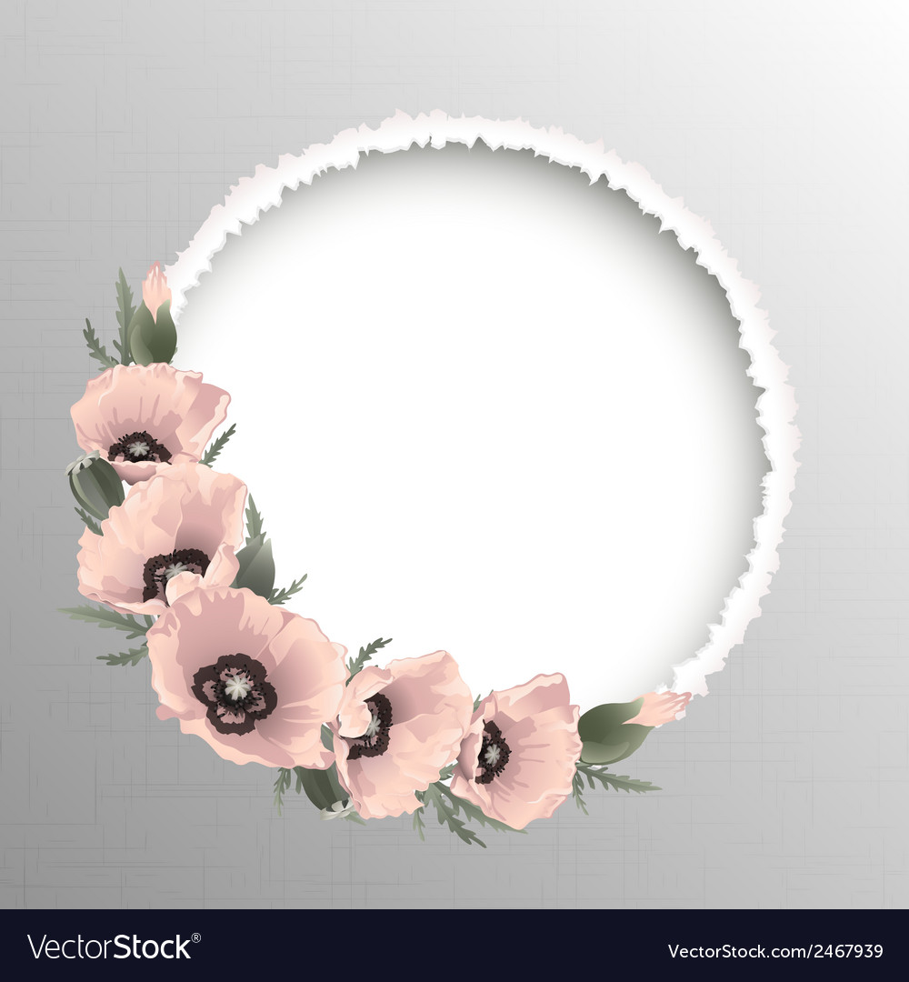 Pink poppies floral round frame vector | Price: 1 Credit (USD $1)