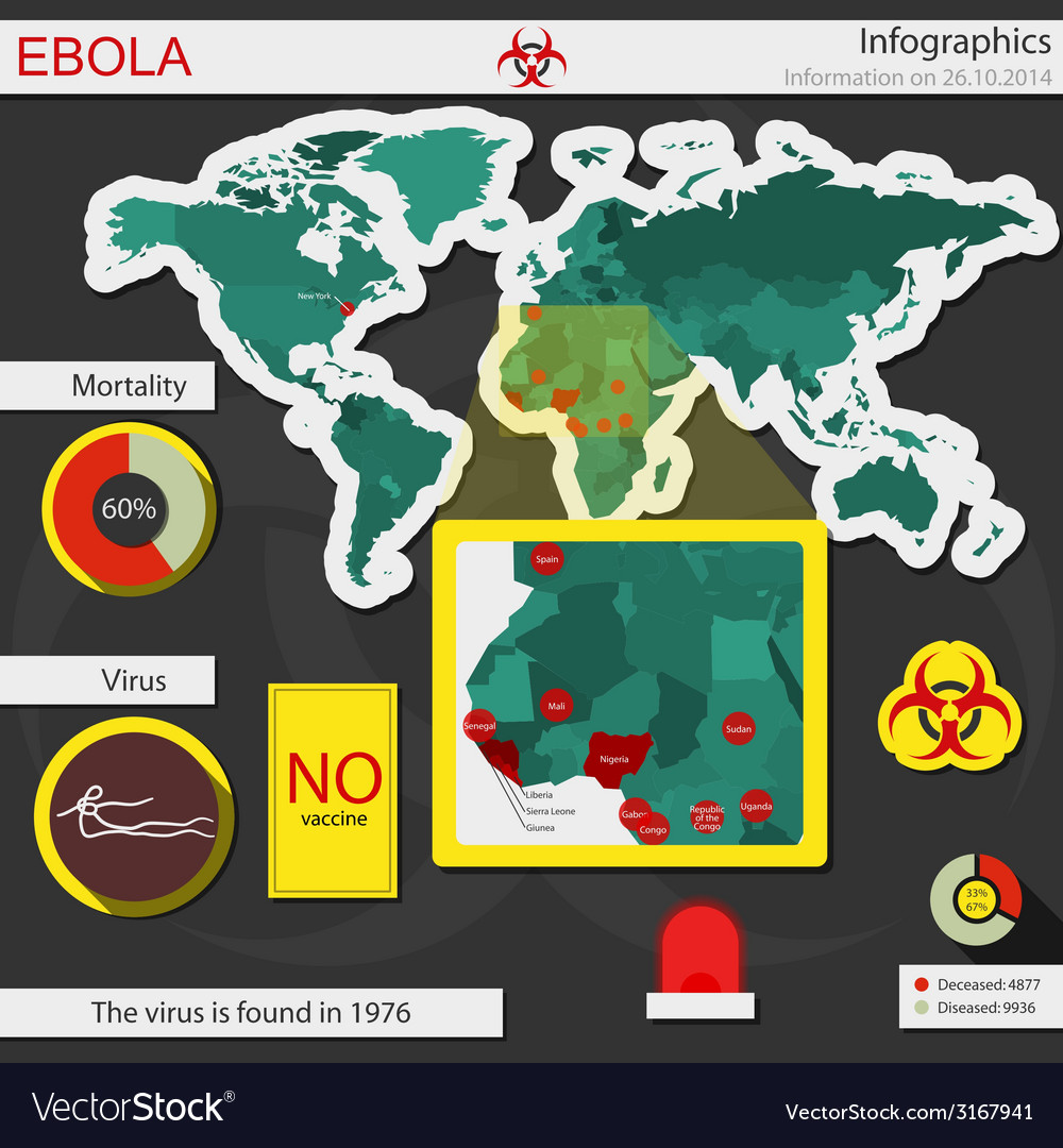 Ebola infographics vector | Price: 1 Credit (USD $1)