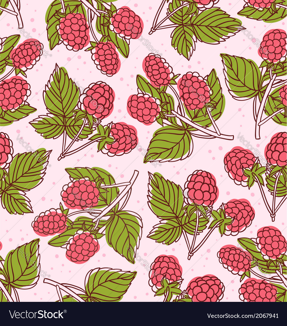 Raspberry pattern vector | Price: 1 Credit (USD $1)
