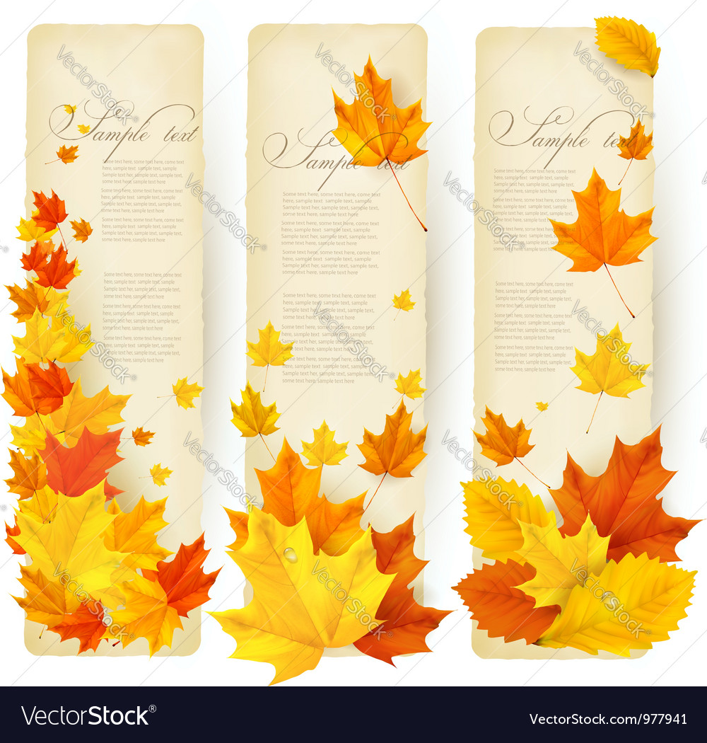 Three autumn banners with colorful leaves vector | Price: 3 Credit (USD $3)